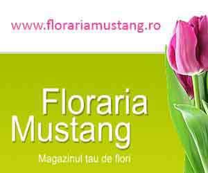 Floraria Mustang